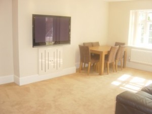Holmesdale Garden flat for sale London